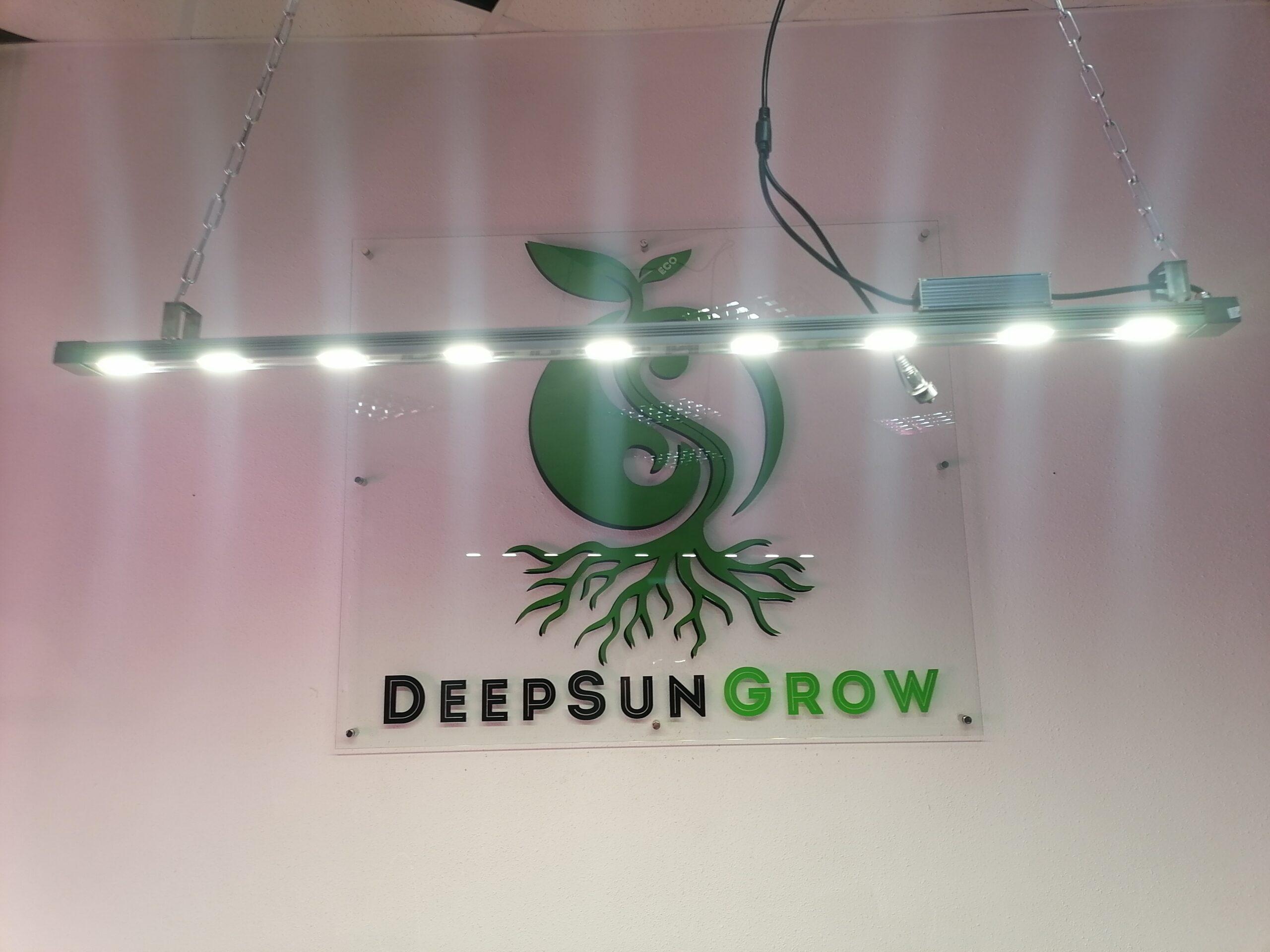 DeepSun 50 Image