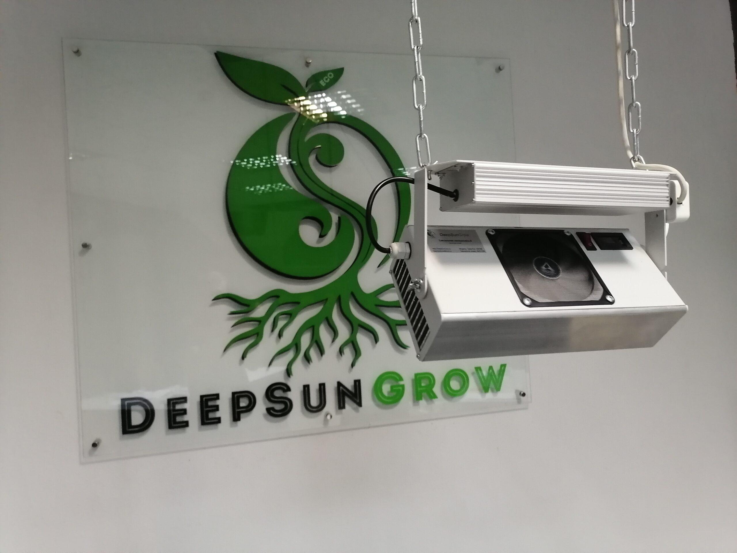 DeepSun300(супер цветение) Image