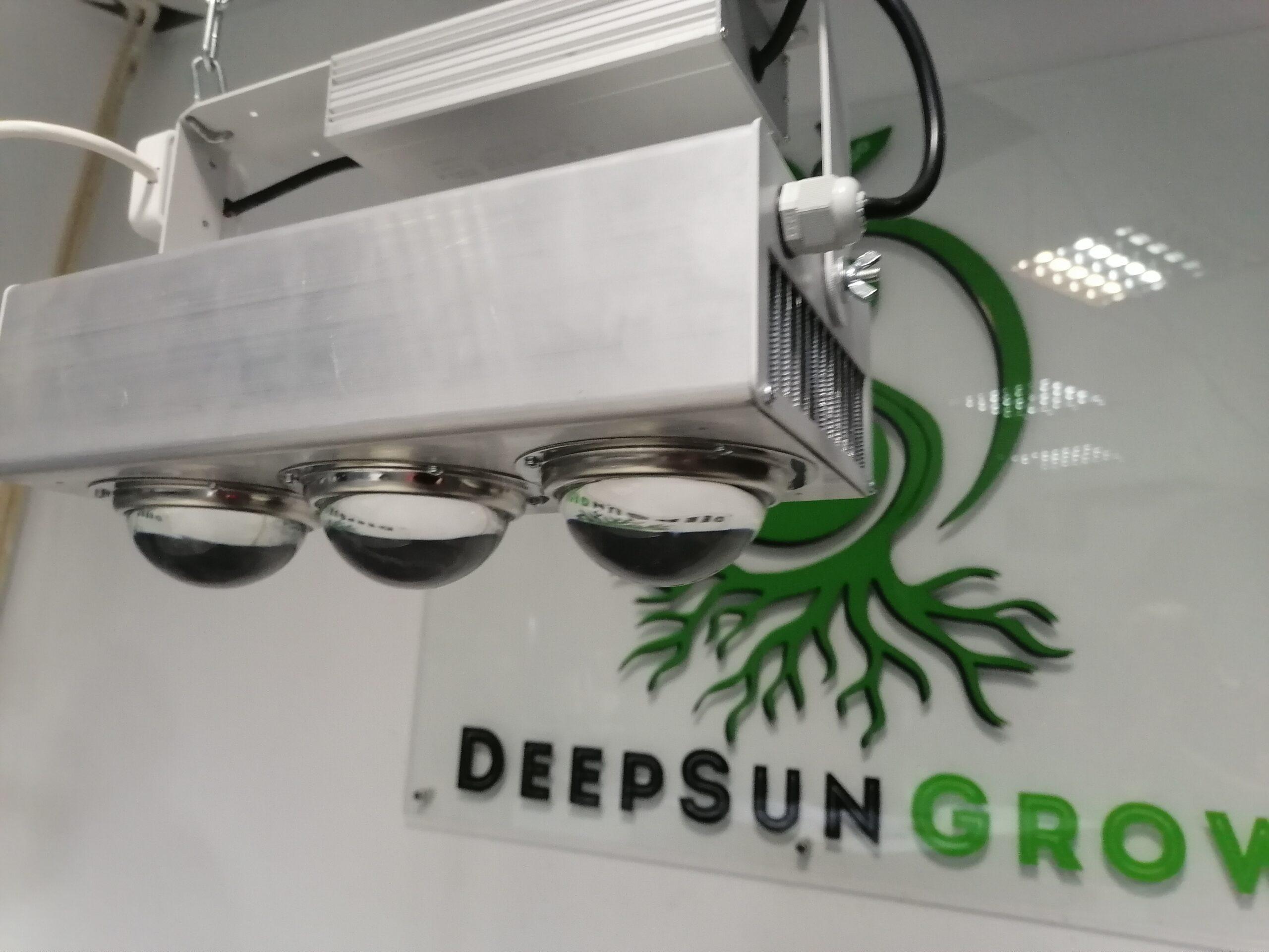 DeepSun 180 (супер цветение) Image